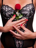 Women with sexy underwear holding a red rose. — Stock Photo