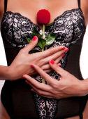 Kadın kırmızı bir gül tutan seksi iç çamaşırı ile. — Stok fotoğraf