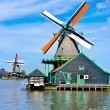 Traditional Dutch windmills — Stock Photo