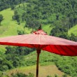 Lanna red umbrella in forest background — Stock Photo
