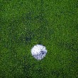 Football ( soccer ball ) in green grass field. — Stok fotoğraf