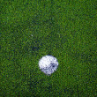 Football ( soccer ball ) in green grass field. - Stock Photo