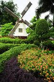 Windmill — Foto de Stock