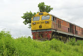 Thailand train — Stock Photo