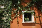 Zielone okna na pomarańczowy — Zdjęcie stockowe