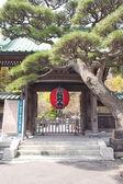 Red lantern in front of temple kamakura — Stock Photo