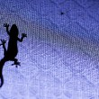 Silhouette of a lizard — Stock Photo #19684175