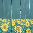 Stock Photo: Sunflowers painting on fence wood