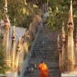 Barefooted buddhist monks in Chiang Mai Thailand — Stock Photo