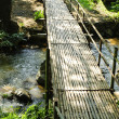 Bridges, bamboo, tropical rain forests,Thailand - Lizenzfreies Foto