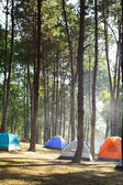 Camping tents by the river — Stock Photo