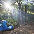 Camping tents in forest — Stock Photo #20106209
