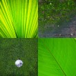 Remix green eco texture background — Stock Photo