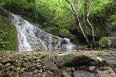 North Thailand waterfall in forest — Zdjęcie stockowe