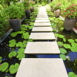 The Stone block walk path in the garden on water — Stock Photo