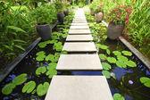 水の庭の石造りのブロック徒歩パス — ストック写真