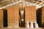 Coffee beans warehouse — Foto Stock