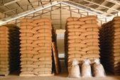 Magazzino di chicchi di caffè — Foto Stock