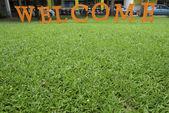 ¡ bienvenido texto sobre pasto verde — Foto de Stock