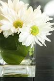 Küçük vazo üzerindeki beyaz çiçekler — Stok fotoğraf