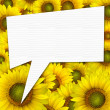 beautiful yellow Sunflower petals closeup background with quote — Stock Photo
