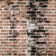 Brick wall background texture — Stock Photo