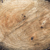Wood surface texture background — Stock Photo