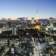Stock Photo: Tokyo tower skyline cityspace sunset view