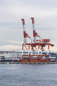 Container stacks and crane in shipyard at sunset for cargo Goods — Fotografia Stock