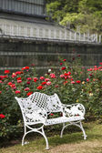 White chairs on red rose gardens — Stock Photo
