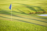 Green field golf with flag — Stock Photo
