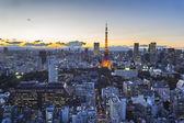 Tokyo cityspace sunset view — Stock Photo