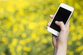 Woman hand holding smartphone against spring green and yellow fl — Stock Photo