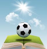 Otwórz książkę piłki nożnej — Zdjęcie stockowe