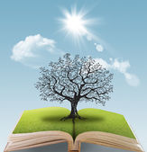 Open book of the big tree — Stock Photo