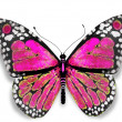 Pink butterfly — Stock Photo #12972510