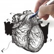 Hand draws heart - Stockfoto