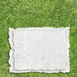 Paper on grass — Stock Photo