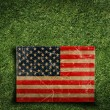 Paper flag of USA on grass — Stock Photo