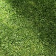 Beautiful green grass texture with sun beam — Stock fotografie