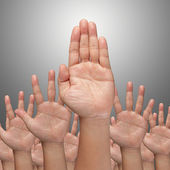 Many Hands raise high up — Stock Photo