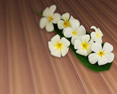 Bouquet of plumeria flowers with leaf on plank teak strip textur — Stock Photo