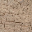 Brown wood texture - Stockfoto