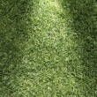 Beautiful green grass texture — Stockfoto