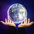 earth globe — Stock Photo #13147648