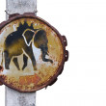Elephant wanring sign — Stock Photo