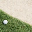 Golf ball on green — Stock Photo #13148954