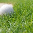 Golf ball — Stock Photo #13149004