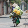 Womon bike in vietnam — Stock Photo #13164857