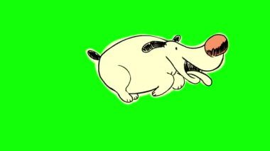 Happy yellow dog on green background — Stock Video